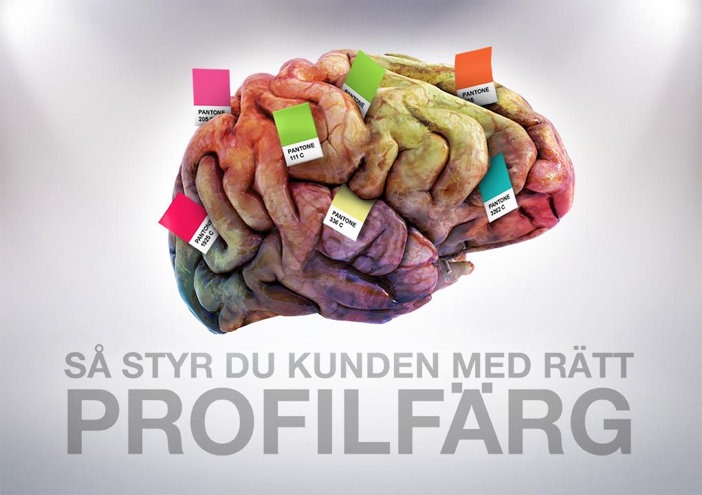 Hjärna med Pantonefärger
